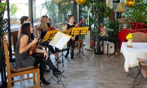 Intuitive Quartet - Vinarija Kovačević, Fruška Gora 2
